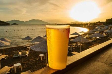 Dicas de Cerveja: gelada por mais tempo e qual é o estilo mais indicado