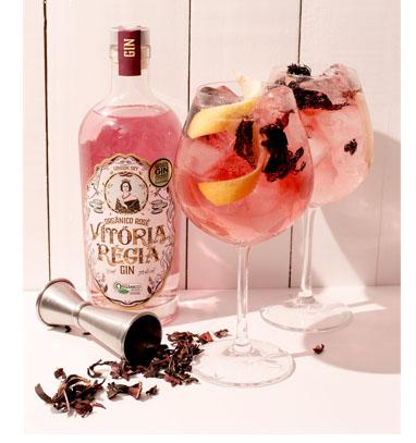 Diferentes receitas com o gin orgânico Vitória Régia