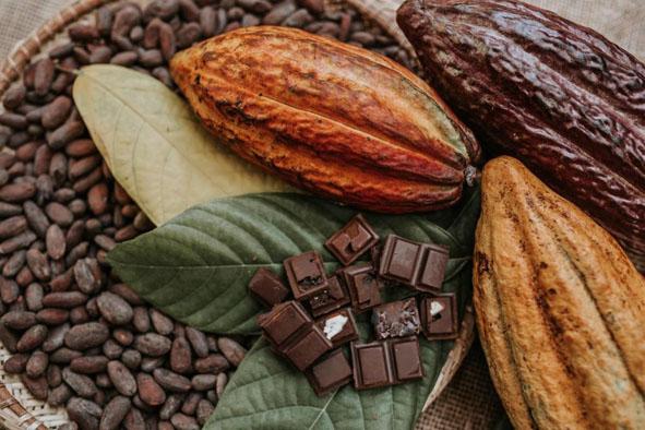 Bienal será palco da maior feira de chocolate do Brasil