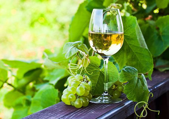Conheça o Vinho Verde, a nova sensação da vinicultura